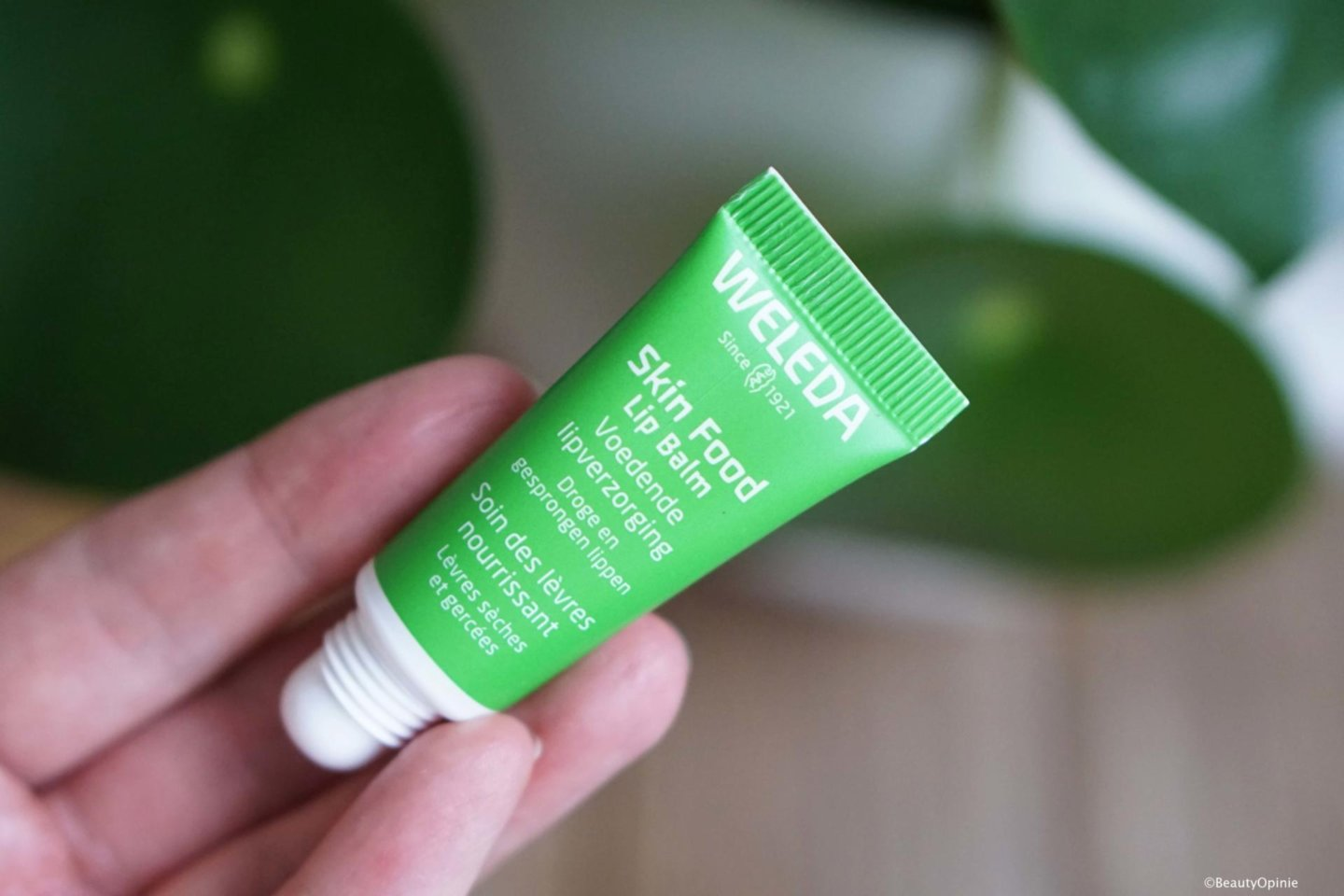 Skin Food Lip Balm review